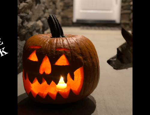 How to have a fun, spooky, and safe Halloween!